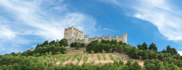 Castillo de Peñafiel en Valladolid, España