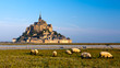 Le Mont Saint Michel, France - 36293232