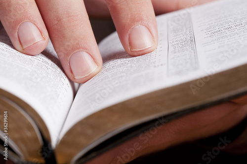 Reading Through the Bible