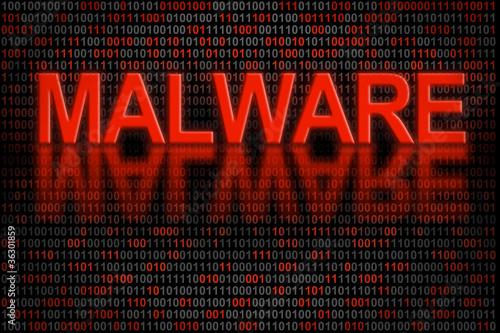 Software code or digital data infected by malware