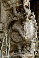 Ancient Hindu temple stone carvings , Kanchipuram, India