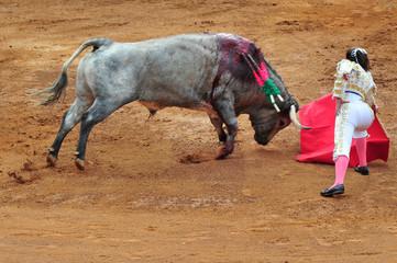 A Matador Challenges a Bull in a Bullfight