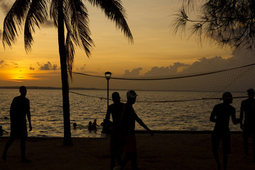 beach volleyball, sunset on the beach