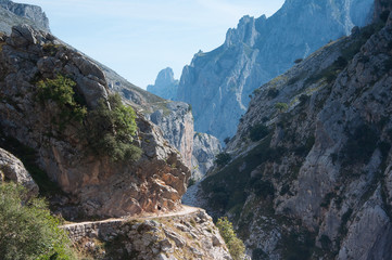 Hiker on Cliffside Path in Gorge de Cares Spain
