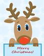Cartoon funny deer