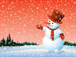 Snowman and winter nature