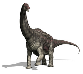 Diamantinasaurus 2