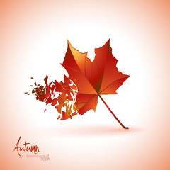 Breaking leaf icon | background.