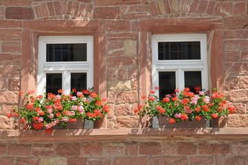 Fenster eines Hauses in Bürgstadt
