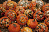 Selection of Turks Head Pumpkins poster