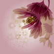 Abstract flower / Wine grape background