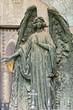 Angel_06