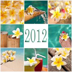 2012, collage fleurs de frangipanier