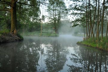Nebel im Spreewald