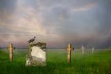 Gravestones at sunrise