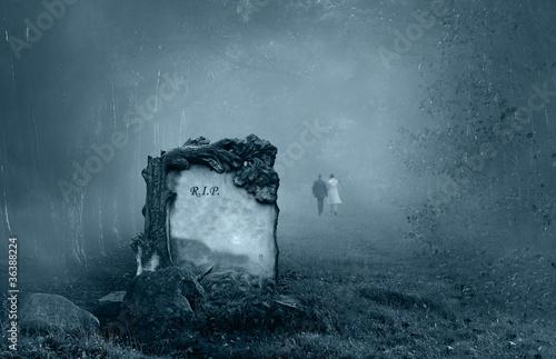 Foto Spatwand Begraafplaats Grave in a forest