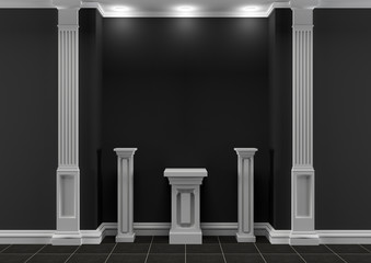 Black and white interior with classic elements for exposition