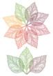 colorful leaf flower, vector