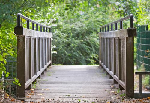 Natur Brücke