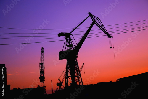 Silhouette of cranes in harbor