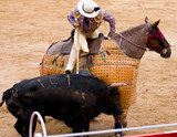 Horseman bullfighting