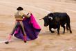 Bullfight - 36413657