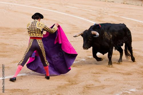 Staande foto Stierenvechten Bullfight