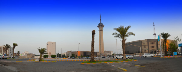 Saudi TV Tower