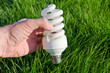 energy saving lamp in hand over green grass