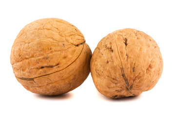 Two ripe brown walnuts