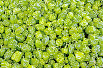 piles of green pepper
