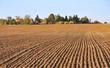 sillons d'un champ menant à un hameau