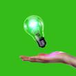 Human hand holding electric bulb