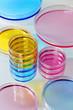 Placas Petri color