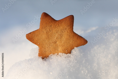 Ginger biscuit on teh snow