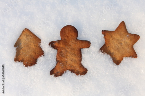 Ginger biscuits on the snow