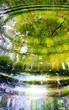 Leinwandbild Motiv Reflection of forest and sun in water