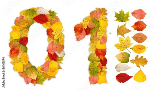 Numbers 0 and 1 made of autumn leaves