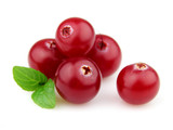 Berry of cranberry with mint