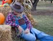 lazy scarecrow