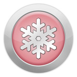 """Light Colored Icon (Red) """"Winter Recreation"""""""