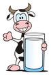 Milk Cow Presenting