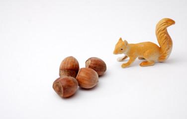 hazelnuts and squirrel