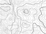 abstract topographical map with no names, vector