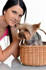 Belle jeune fille avec cute yorkshire terrier chien