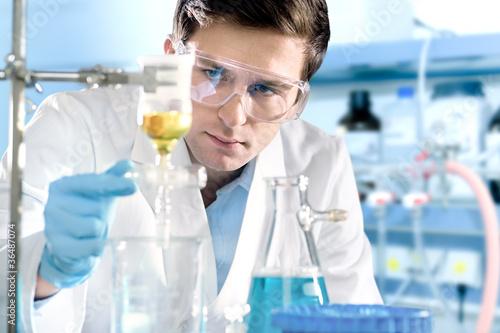 Fototapeta scientist working at the laboratory