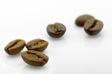 focus on a coffee bean in front of others on white background