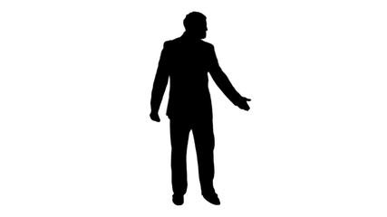 shadow of businessman
