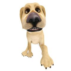 dog cartoon begging for love