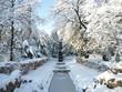 Jardin en hivers